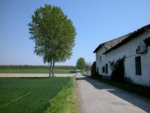Farm and road. Landscape of countryside with farmhouse, road and trees in springtime, Italy Stock Photography