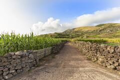 Corvo Farm Road