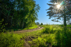 Farm road Royalty Free Stock Images