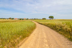 Farm road and houses in Vale Seco, Santiago do Cacem. Alentejo, Portugal Royalty Free Stock Photos