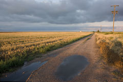 Farm road in north eastern Colorado after rain storm. Dirt farm road in Colorado after heavy rain with harvested wheat fields in sunset light Royalty Free Stock Images