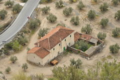 The farm on the road in Spain. The farm on the road in an olive orchard stock photos