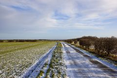 Farm road and wheat field Stock Photo