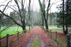Farm road before winter in Luxembourg. Farm road before winter in  Luxembourg royalty free stock photography