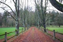 Farm road before winter in Luxembourg. Farm road before winter in  Luxembourg stock photos