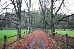 Farm road before winter in Luxembourg. Farm road before winter in  Luxembourg royalty free stock photo