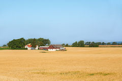 Farm in a rural landscape Royalty Free Stock Images