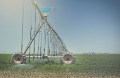 Farm's crop being watered by sprinkler irrigation system Royalty Free Stock Photos