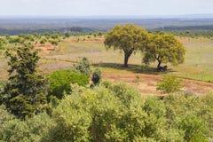 Farm in Santiago do Cacem Stock Images