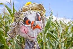 Farm Scarecrow Royalty Free Stock Photos
