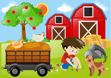 Farm scene with boy and dog in the field Royalty Free Stock Photos