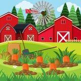 Farm scene with carrot garden. Illustration Stock Images