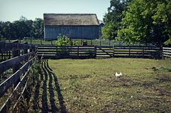 Farm Scene. A farm scene with a chicken, lots of fencing, shadows, trees and pasture.  Located at Old World Wisconsin in Eagle, Wisconsin Royalty Free Stock Photo