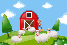 Farm scene with farmer and sheeps Stock Photography