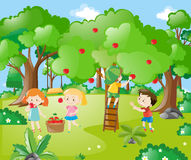 Farm scene with kids picking apples royalty free illustration