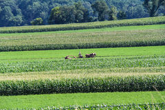 Farm scene in Lancaster County, Pa stock images