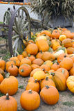 Farm Scene Old Wagon Vegetable Pile Autumn Pumpkin Stock Image
