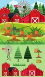 Farm scene with red barns and carrot garden. Illustration Royalty Free Stock Image