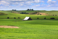 Farm scene in Washington state Stock Image