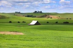 Farm scene in Washington state. Old barn in the beautiful landscape of Washington Stock Image
