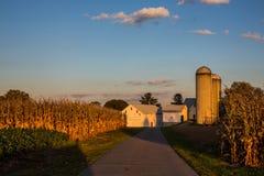 Farm scenic Stock Image