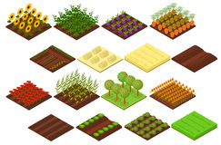 Farm Set Isometric View. Vector. Farm Set Isometric Basic Elements Agriculture View for Web, App. Vector illustration Stock Photo