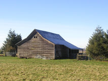 Farm Shed. An old building on a small farm in Black Diamond, Washington Royalty Free Stock Photos