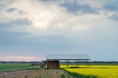 Farm shed near Ballarat, Australia. A farm shed in a yellow canola field, near Ballarat, Australia royalty free stock photos