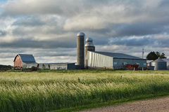 Farm Sheds and Silos. A farm site within a fence line and wild grasses Stock Images