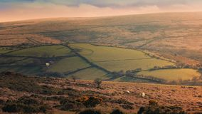 Farm And Sheep On Hillside At Sunset stock footage