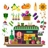 Farm shop, natural food. Farm shop: vegetables and fruits. Natural food, vegan lifestyle, count with food, autumn harvest. Vector flat illustration Stock Photo