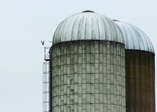 Farm silo Stock Images