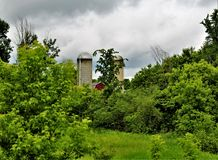 Farm silos located in Franklin County, upstate New York, United States. Rural farm and silos with surrounding green vegetation located in Franklin County royalty free stock images
