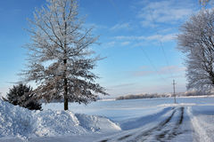Farm Site Drive. Looking down a wintry country driveway Royalty Free Stock Image