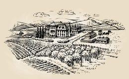 Farm sketch. Farming, agriculture, vineyard. Vector illustration Stock Photography