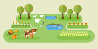 Farm small location. Organic farming idyllic landscape with cow, sheep, goose in pond and vegetable patches with corn, wheat, sunflower, pumpkin. Flat design Royalty Free Stock Photos