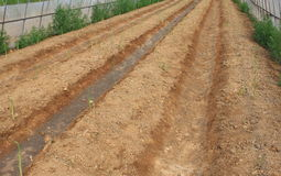 Farm soil Stock Photos