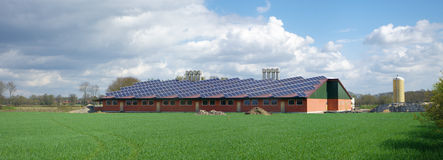 Farm with solar panels Royalty Free Stock Photo