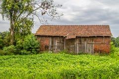 Farm with Soy plantation Royalty Free Stock Photography