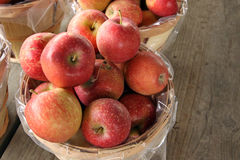 Farm stand apples. Royalty Free Stock Photo