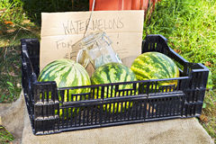 Farm stand sale. Watermelons for sale at farm stand Stock Images