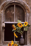 Farm still life. A vase full of flowers sits upon a window ledge Stock Photography
