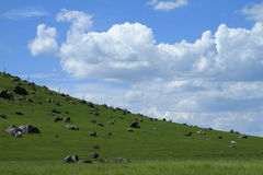 Farm and stones. Farm in Inner Mongolia of china Stock Images