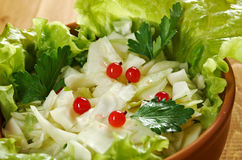 Farm-style salad of cabbage Royalty Free Stock Photo