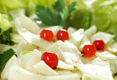 Farm-style salad of cabbage Royalty Free Stock Images