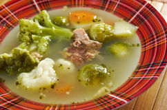 farm-style   soup with broccoli Royalty Free Stock Image