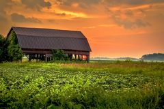 Free Farm Sunset Stock Images - 48955434