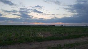 Farm sunset stock image