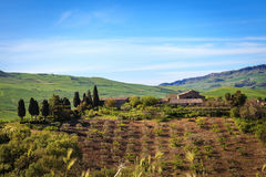 Farm surrounded by greenery Stock Images