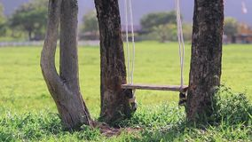 Farm swing hanging on tree. Royalty Free Stock Images